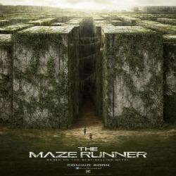 maze runner walls